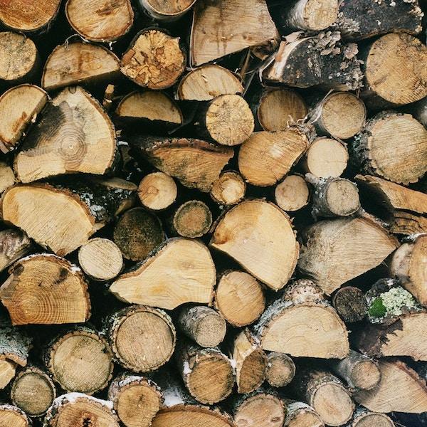 Autumn fires - logs