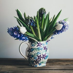 Fed up in February - hyacinths